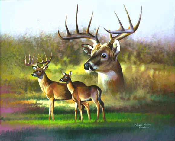 smoky mountain artist, smoky mountain art, smoky mountain paintings, paintings of smoky mountains, paintings smoky mountains, Animal Paintings, Wildlife Paintings, animal & wildlife artwork, paintings of animals~Wildlife Artist~Smoky Mountains. Paintings of animals from around the world done by Christian artist Spencer Williams