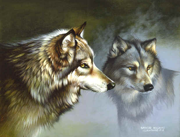 animal and wildlife paintings, Keepers of the Wild...Animal Paintings ~ Wildlife Art ~ Animal Paintings & Animal Artwork~ Paintings of Wildlife ~ Keepers of the Wild painting by Spencer Williams ~ Smoky Mountains Tennessee ...Animal Paintings ~ Wildlife Art ~ Animal Paintings & Animal Artwork~ Paintings of Wildlife ~ Keepers of the Wild painting by Spencer Williams ~ Smoky Mountains Tennessee