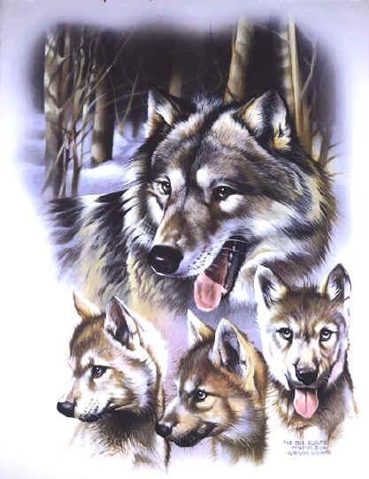 Animal Paintings ~ Paintings of Wof, wolf painting~ Wildlife Art ~ Animal Paintings & Animal Artwork~ Paintings of Wildlife ~ Smoky Mountains Tennessee